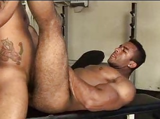 Biggest Muscled Hairy Chap Wanted To Receive Drilled