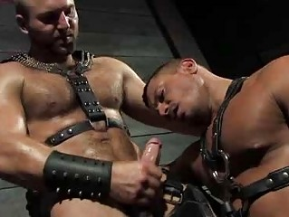 Curly Guy Tom Wolfe In Leather And Fucking Angelo