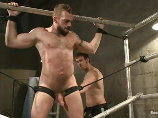 Gay bear Johnny is being whipped by his male friend. Such a large bushy chap all tied and whipped can give you a serious erection. That guy screams at every whip strike and when the whipping is finished Johnny is hanged upside down and fed with some hard cock. Perhaps that guy will end up with a very large load of spunk on his beard